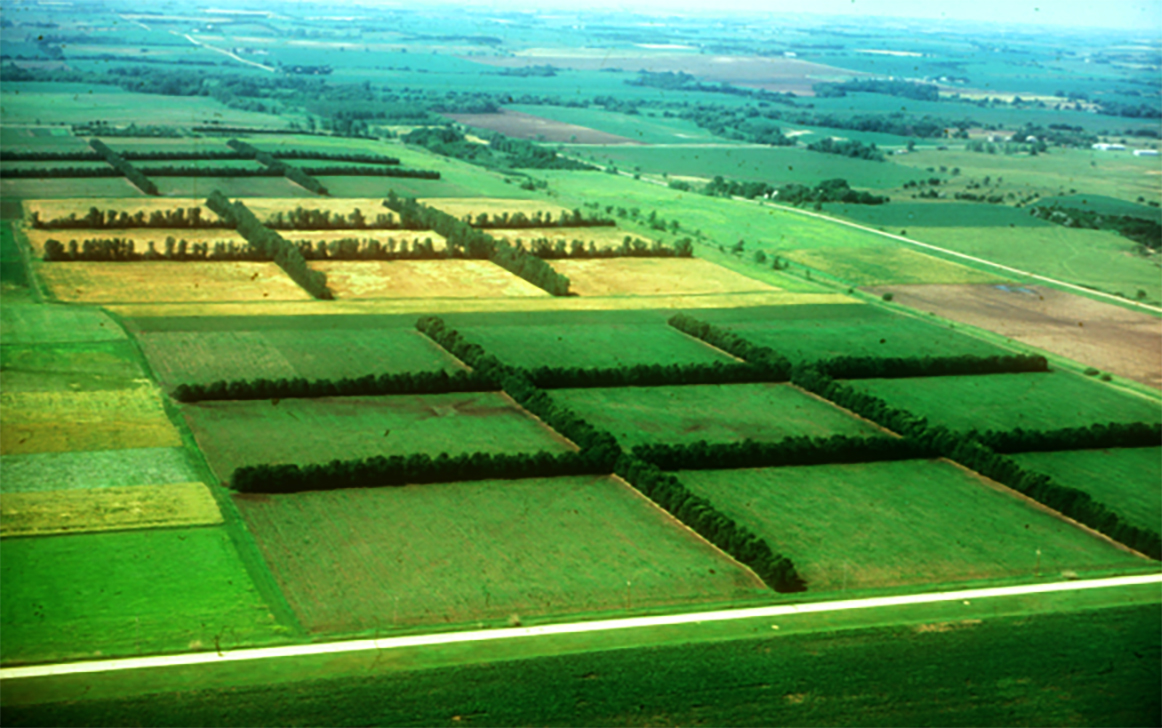 aerial view of the shelterbelt research farm